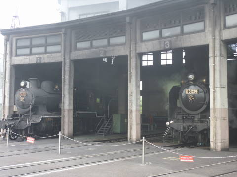 P1000116-3.JPG